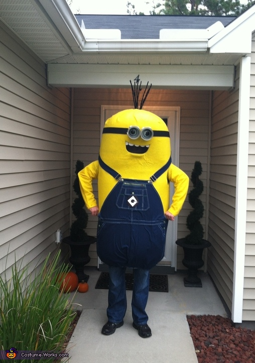 The Husband's Masterful Minion Costume