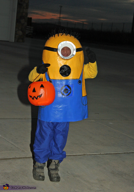 Minion Carl Costume
