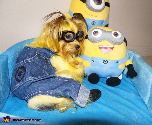 Minion from Despicable Me Costume