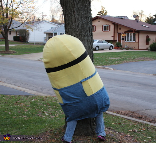 Waiting for the cars to jump out at them   Boo......, Minions Costume