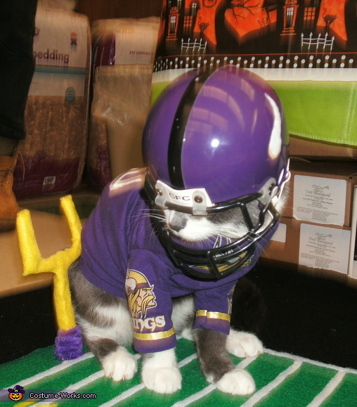 Minnesota Vikings Quarterback Costume