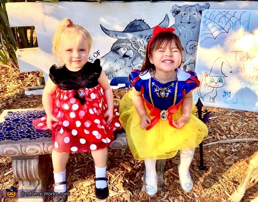 Minnie and Snow White Costume