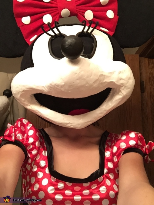 Minnie's selfie, Minnie Mouse Costume