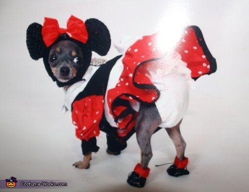 Minnie Mouse Dog Costume