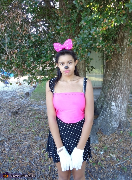 Miss Minnie Mouse Costume