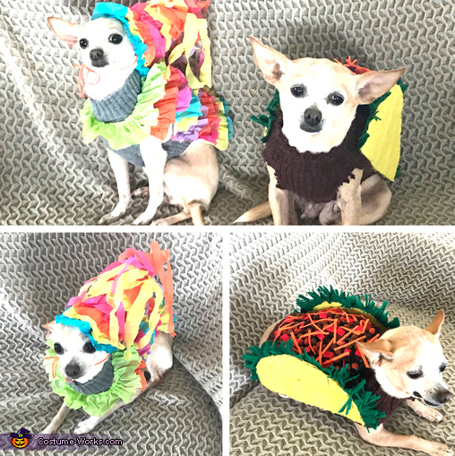 Miss Pinata and Miss Taco Costume