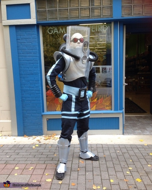 Mister Freeze Costume