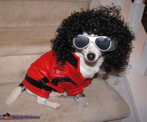MJ Costume