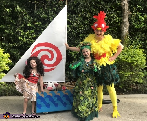 Moana, Te Fiti and Heihei, The amazing Moana Family Costume
