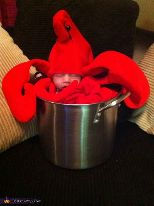 Adorable baby lobster, Tristan!, Mommy's Little Lobster Costume
