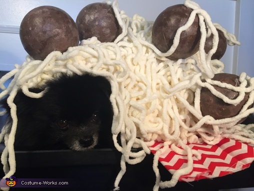 Mom's Spaghetti, Mom's Spaghetti Costume