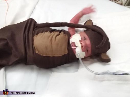 Wiggly monkey, Monkey Costume