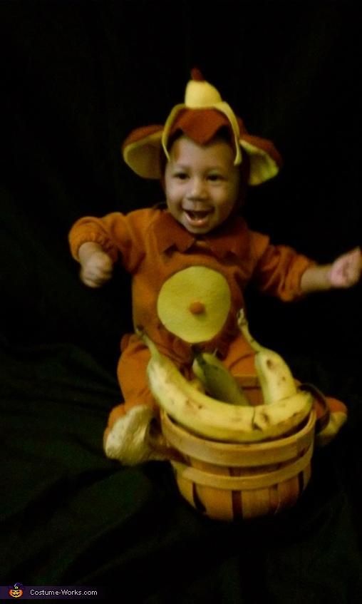 Adorable Monkey Baby Costume