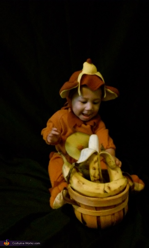 Adorable Monkey Baby Costume