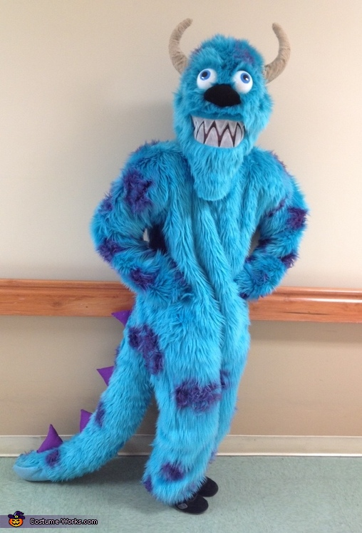 Sully, Monsters Inc. Costume
