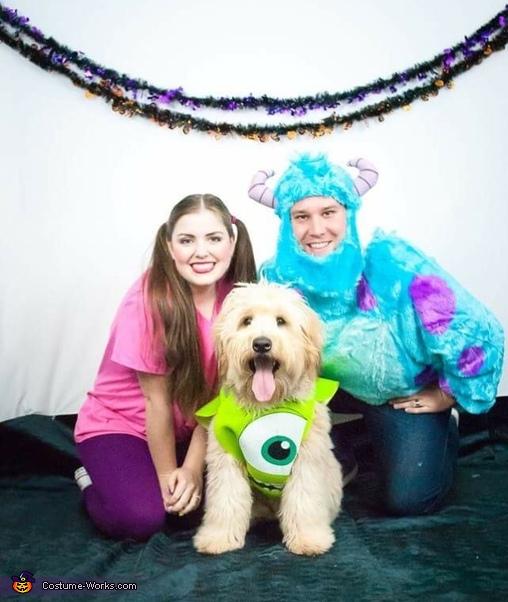 Creative Monsters Inc Costume Diy Costumes Under 25 Photo 3 3