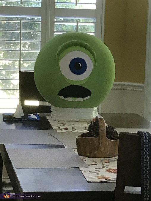 Before we cut out holes and added horns, Monsters, Inc. Mike Wazowski Costume