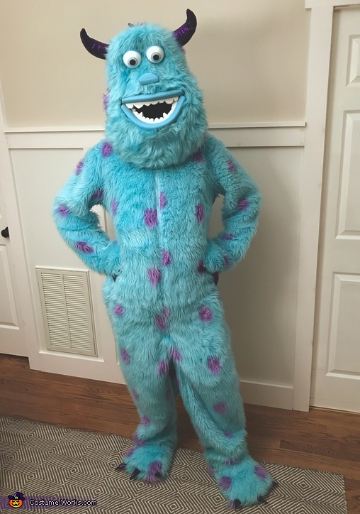 Sullivan Costume, Monsters Inc. Costume