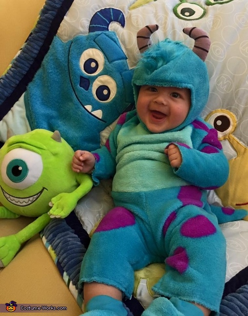 Monster's Inc. Sulley Costume