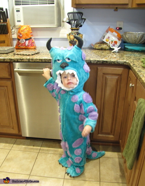 & Monsters Inc. Sully Baby Costume