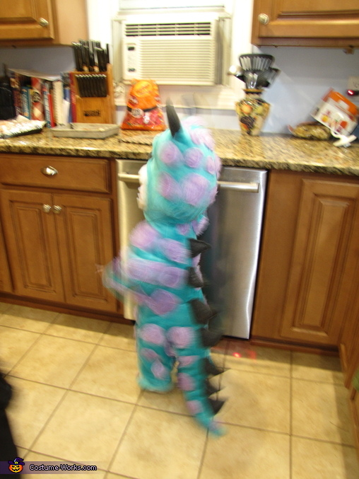 Monsters Inc. Sully Baby Costume