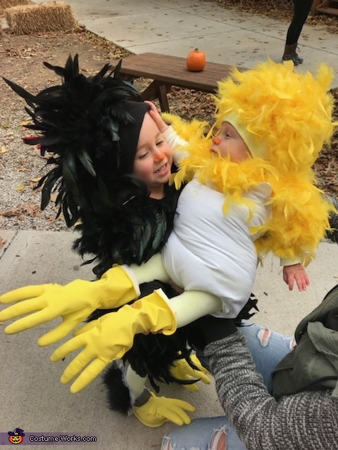 Mother Hen and her Chick Costume