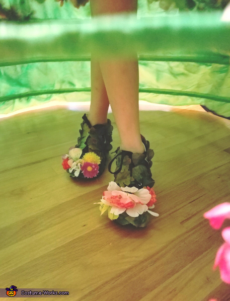 shoes, Mother Nature Costume