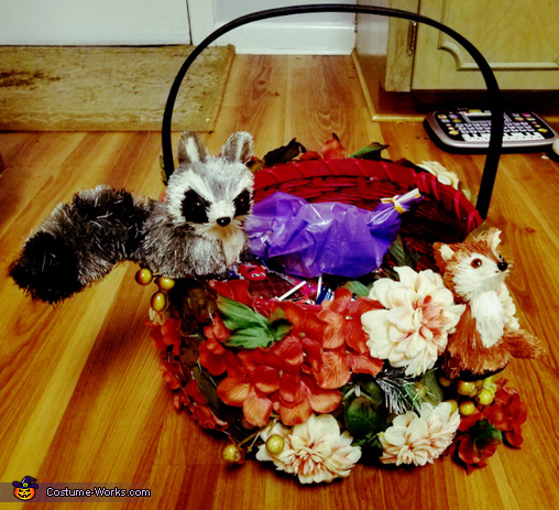basket, Mother Nature Costume