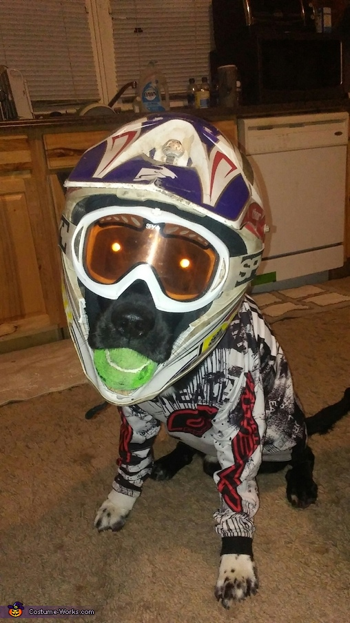 Motocross Dog Homemade Costume