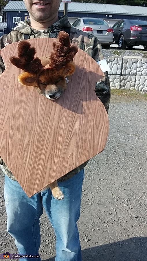 Mounted Deer Trophy Homemade Costume
