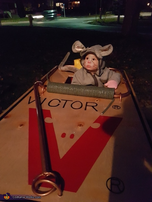 Mouse in a Trap Homemade Costume