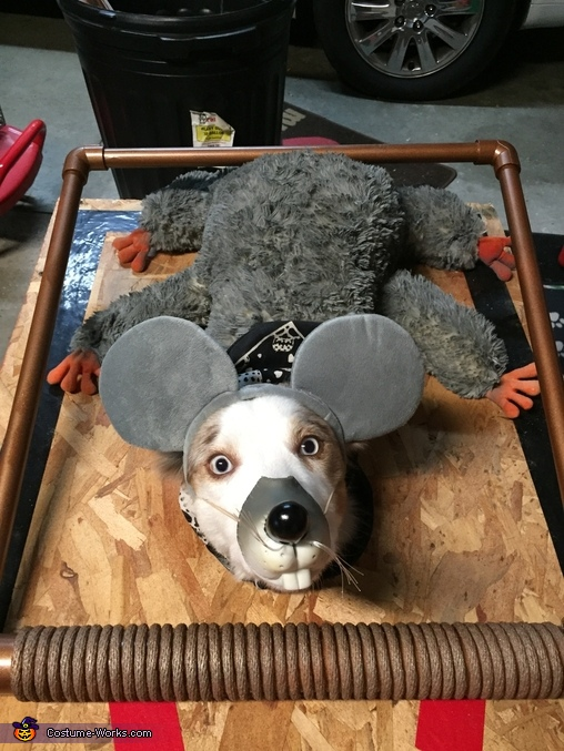 Mousetrap Costume