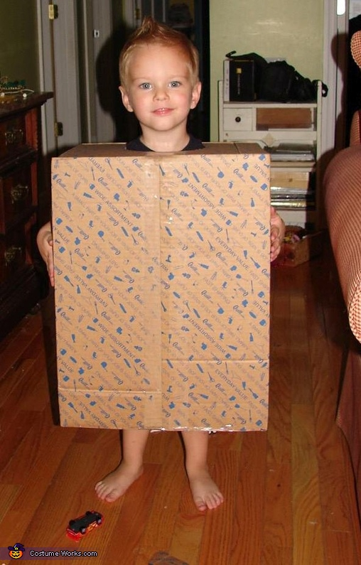 Mr. Bag Homemade Costume