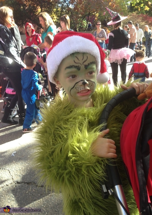 Mr. Grinch Homemade Costume