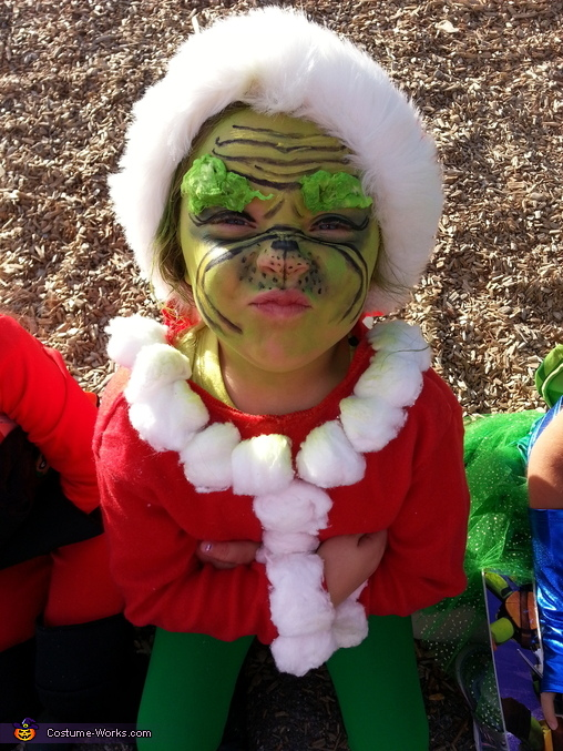 Mean Ol Grinch, Mr. Grinch Costume