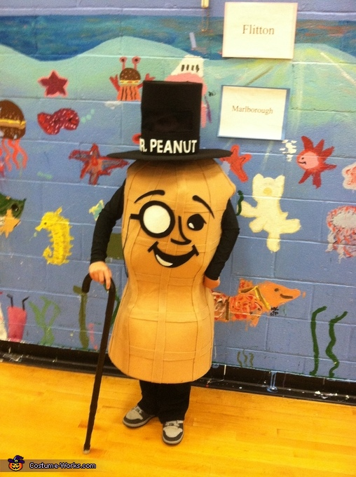 Mr. Peanut Homemade Costume