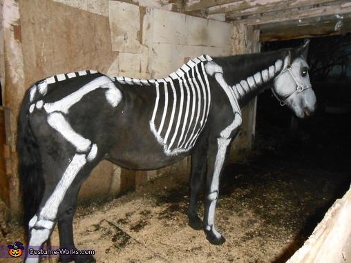Ms Bones Costume