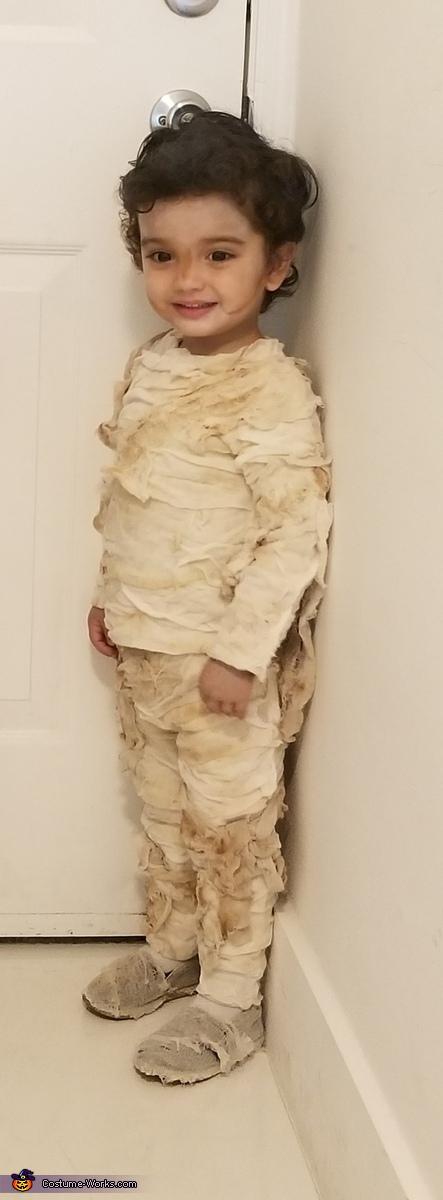 Mummy Momia Homemade Costume