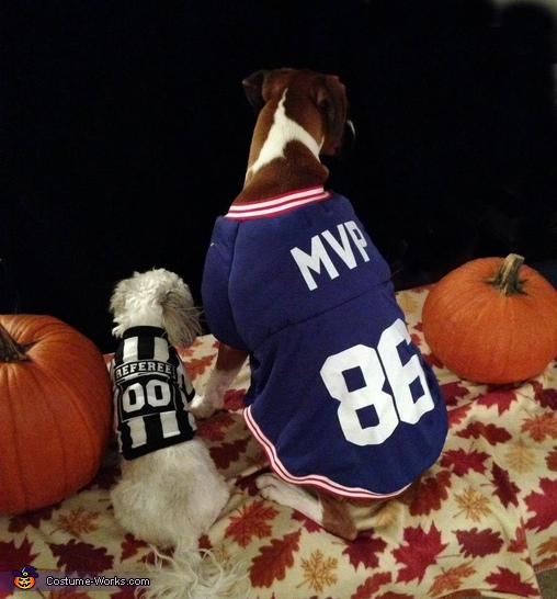 Rockie and his ref, MVP Costume