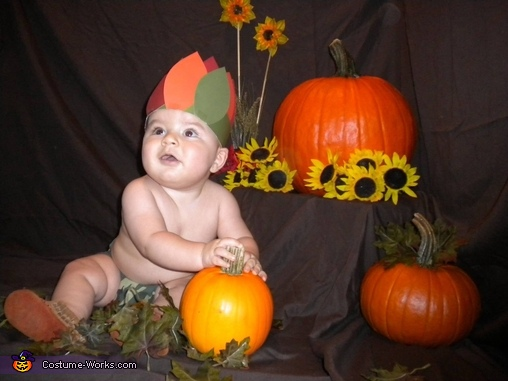 Native American Baby Costume