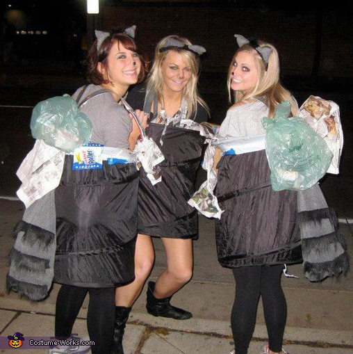 Naughty Garbage Scavenging Raccoons - Homemade costumes for groups