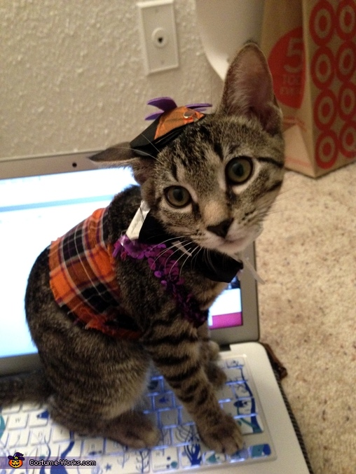 Nerdy Kitty Costume