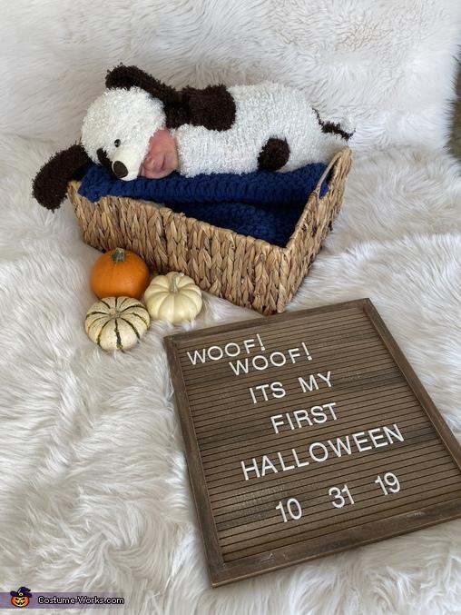 Newborn Puppy Costume