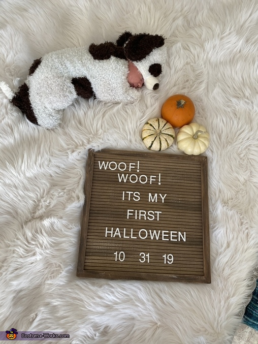 Newborn Puppy Homemade Costume