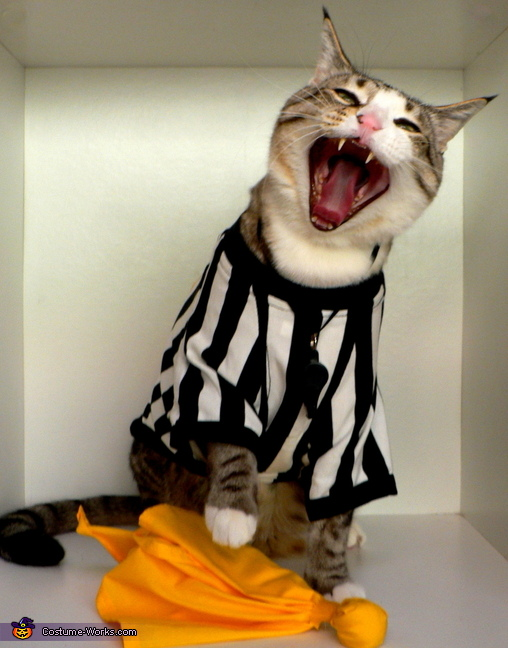 NFL Referee Cat Costume