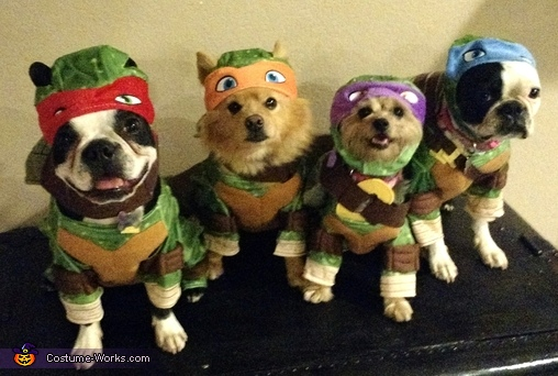 Ninja Turtle Dogs Costume