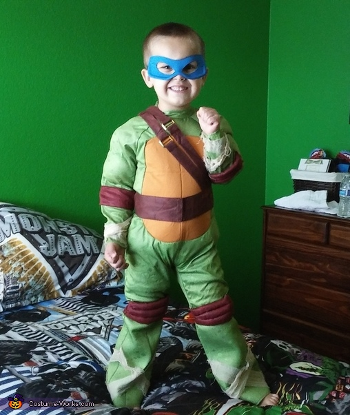 Ninja Turtle Leonardo Costume