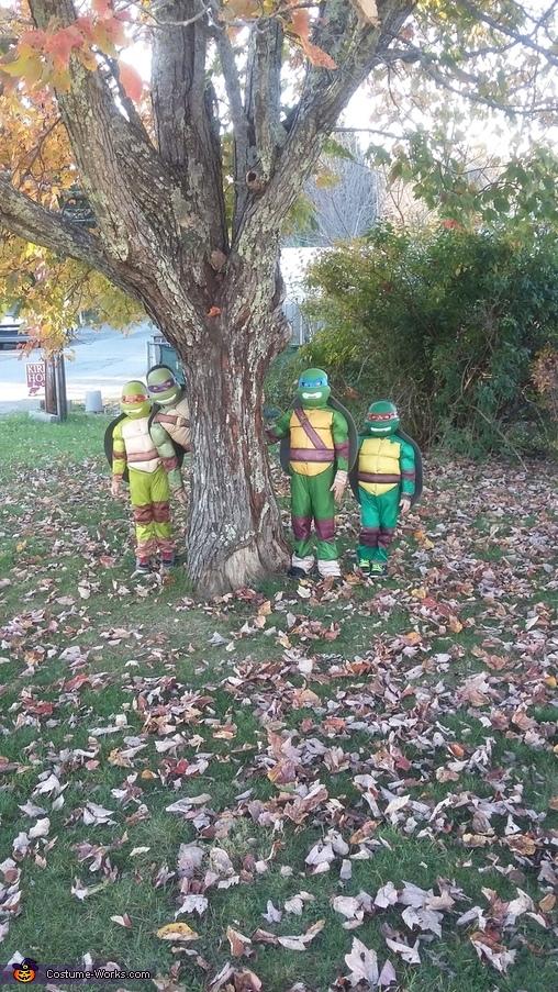 Sneaky Turtles, Ninja Turtles Costume