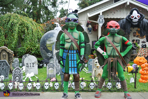 Donatello and Raphael, Ninja Turtles Family Costume