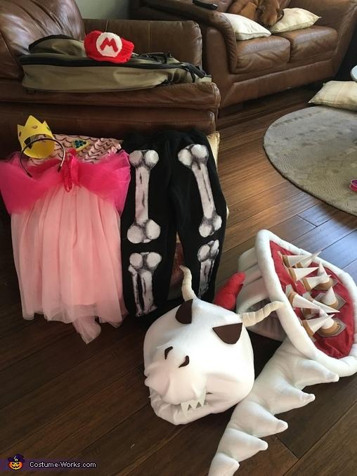 Costumes in progress, Nintendo Family Costume